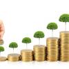 Money Management: Základní pilíř obchodování