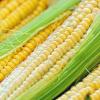 Levný spread na kukuřici